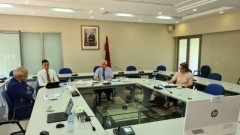 Videoconference: Development of renewable energies in Morocco: lessons and perspectives